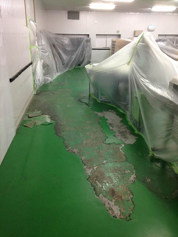 千葉県内食品工場 塗床改修工事(夜間)ケミクリートクイックE