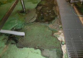 宮城県仙台市のホテル|厨房洗浄室の塗り床(塗床)改修工事:ケミクリートMSモルタル防滑工法