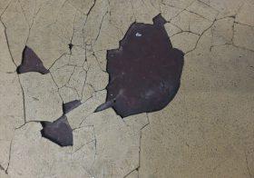 東京都内の結婚式場|厨房塗床補修工事現地調査