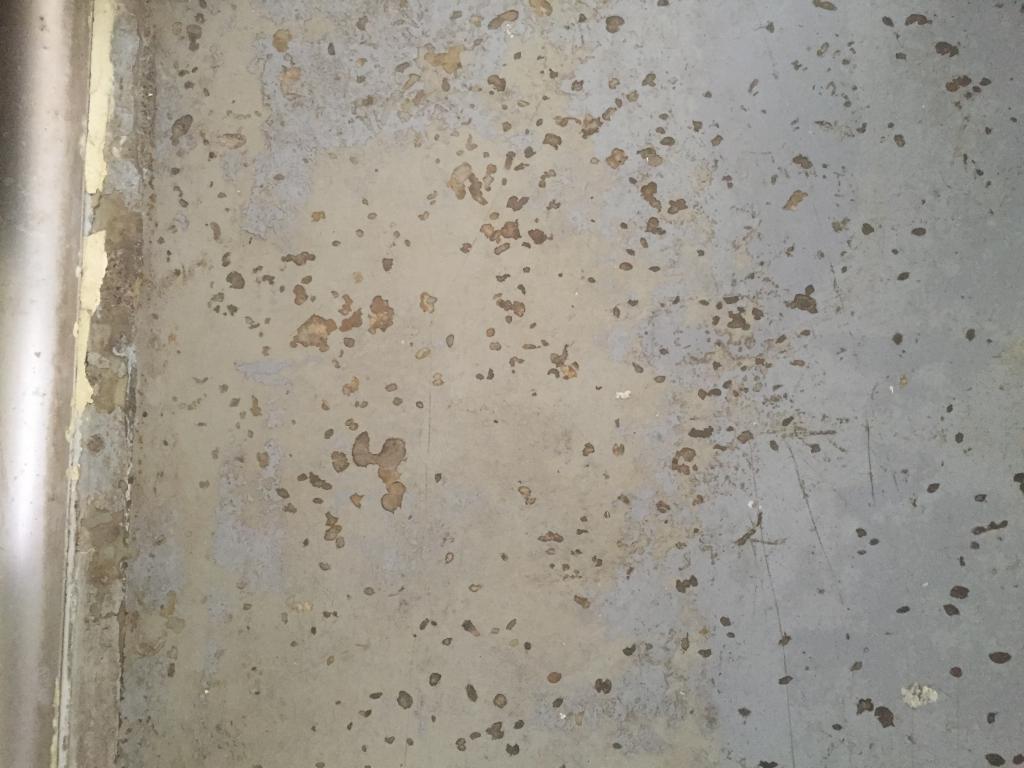 食品工場通路床塗装剥離