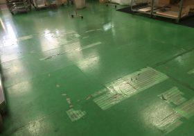 東京都江戸川区のドーナツ工場床塗装(塗床)補修下見