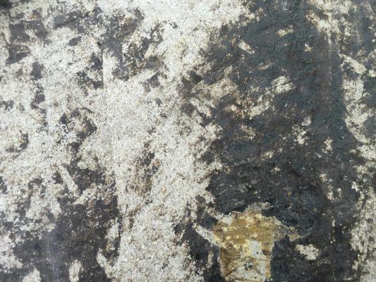 東京都品川区の設計事務所オフィス|コンクリート床防塵を2分割で施工:シリケートハードナーJP
