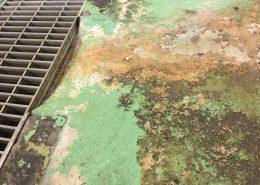 埼玉県内の給食センター塗床工事