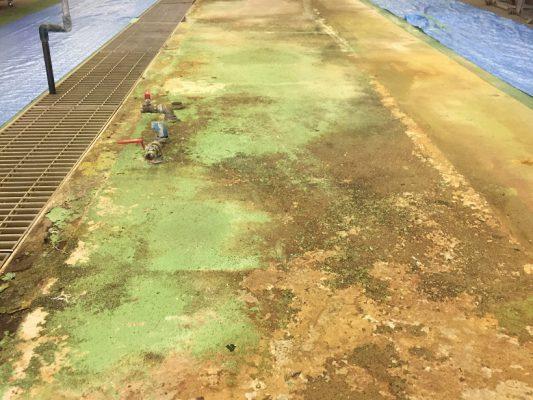 埼玉県内の給食センター|厨房洗浄機下の塗床(床塗装)改修工事:ケミクリートクイックE