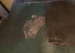 千葉県千葉市の水産冷凍庫塗床補修