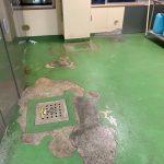 厨房塗床の剥離を調べた際の画像です。