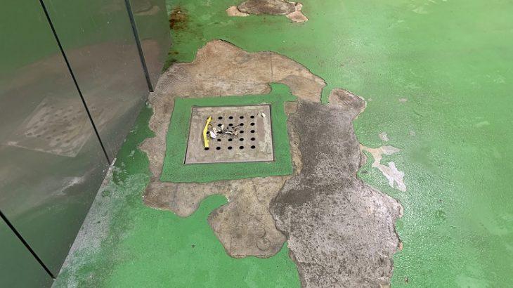 飲食店厨房の塗床はとにかく剥がれが多いのはなぜ?