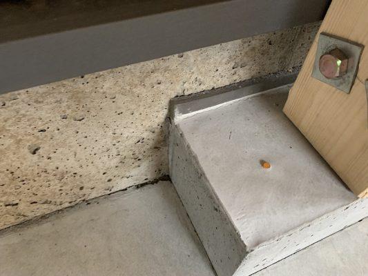 立上りのコンクリートが巣穴だらけ