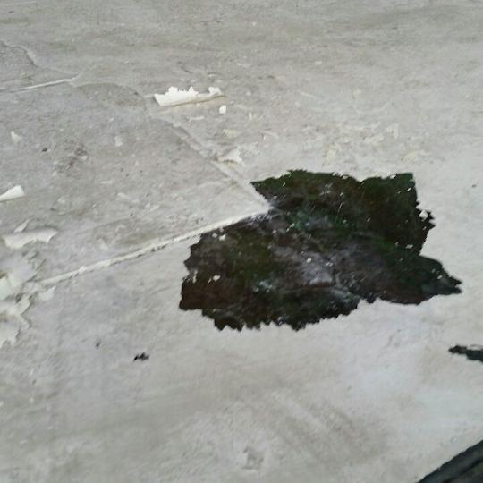 床の剥がれ